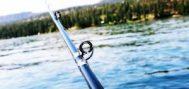 Bagaimana Membersihkan Joran Secara Tepat Sehabis Mancing di Laut?
