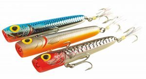 Dapatkah Ikan Membedakan Warna Umpan