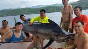 Kiat Menaklukan Marlin