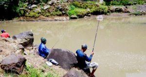 Memancing Ikan Pada Musim Hujan