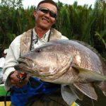 Ikan Black Bass
