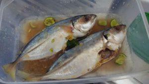 Manfaat dan Khasiat Ikan Kembung