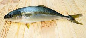 Manfaat dan Khasiat Ikan Ciling-ciling