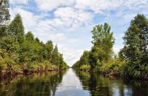 sungai sebangaua