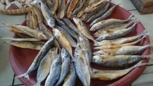 Manfaat dan Khasiat Ikan Teri
