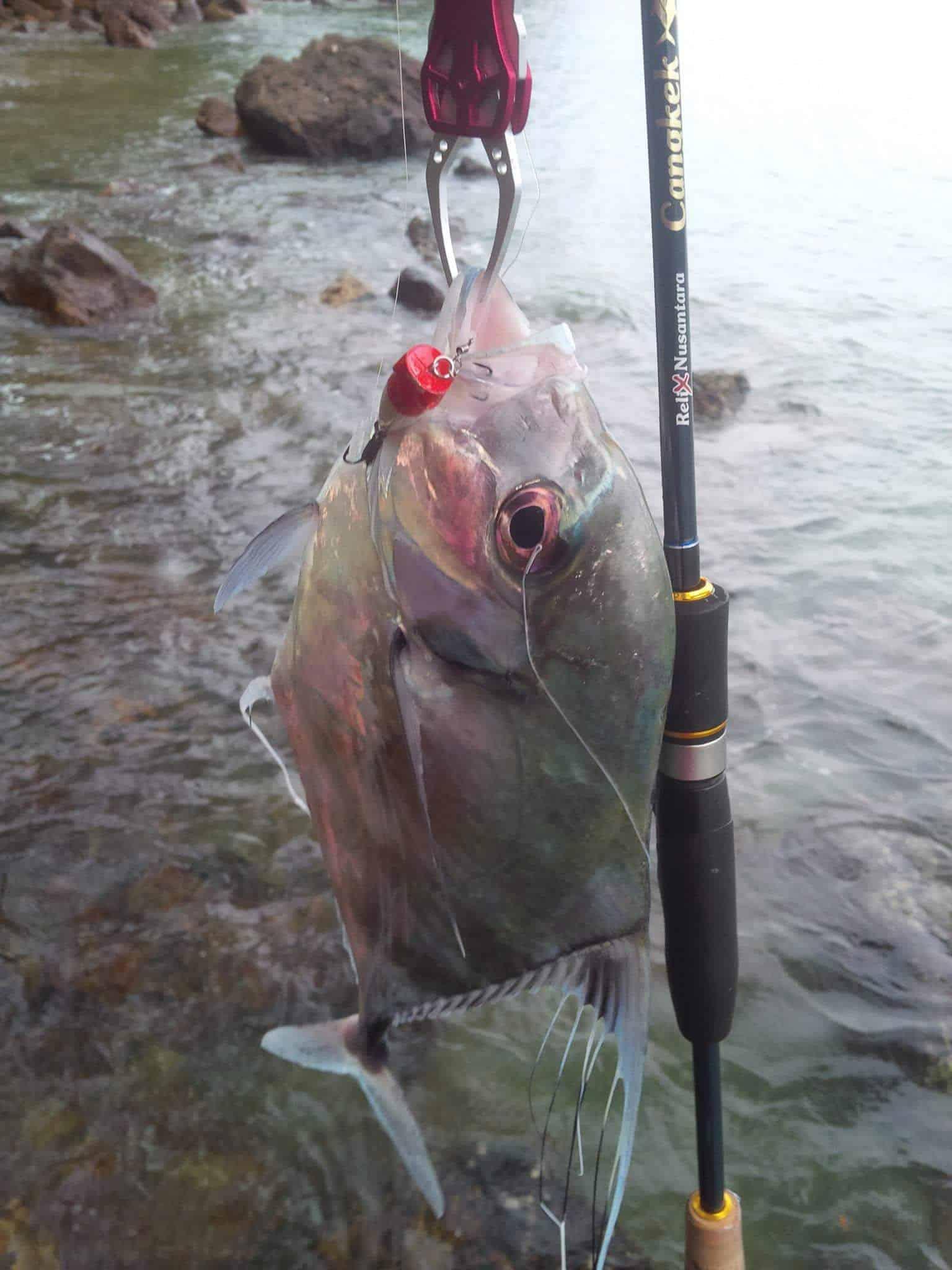 Mengenal Ultra Light Fishing