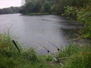Tips Dan Trik Memancing Ikan Di Sungai