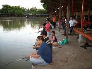 Tips mancing ikan di kolam