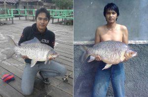 Spot mancing ikan kelabau di Kalimantan