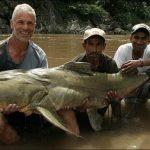 2 Ikan Langka di Bukit Barisan