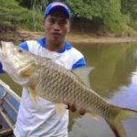 Mengenal Karakter Ikan
