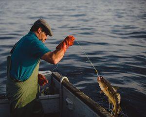 Apa itu Handline Fishing