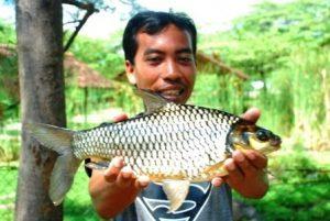 Tips mancing ikan tawes di sungai