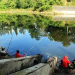 10 Spot Favorit Mancing Liar Air Tawar Di Malang