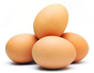 Umpan bawal telur madu