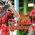 Joran UL 5 Ribuan Anti Ambyar Ambyar People