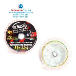 PE Duraking Genesis X8 100m Connecting