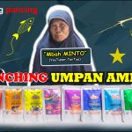 Launching Umpan Amisan